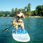 Dogs love paddleboarding too here in Rincon!
