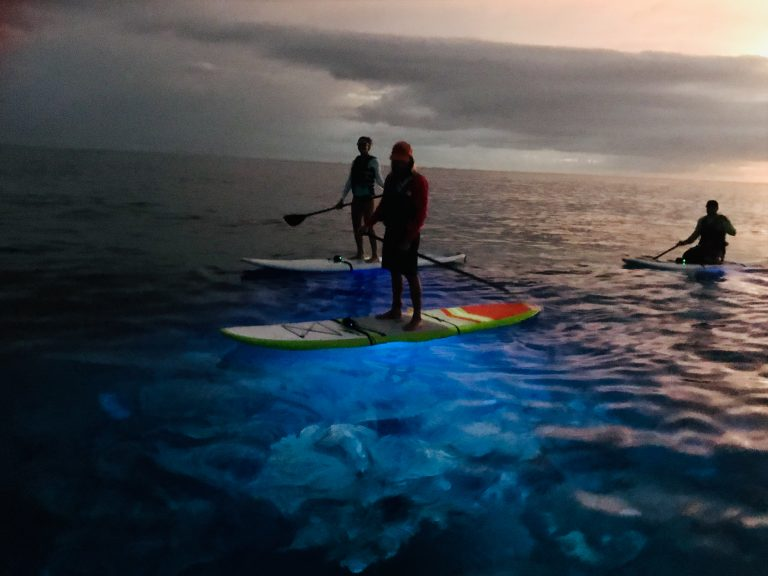 night tour stand up paddle board with LED lighting